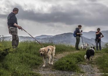 II° Dog trekking Toscana Pet Friendly