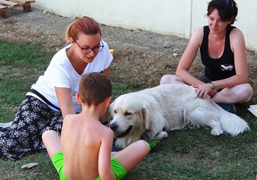 La Scuola di Fido: Giochi tra cuccioli