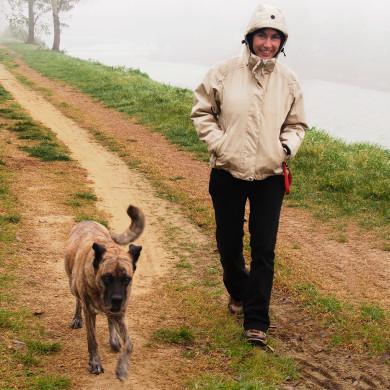Incontro sul cane anziano con dott.ssa Elisa Ottonetti